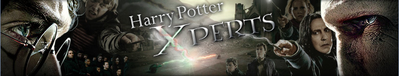 Harry Potter Xperts